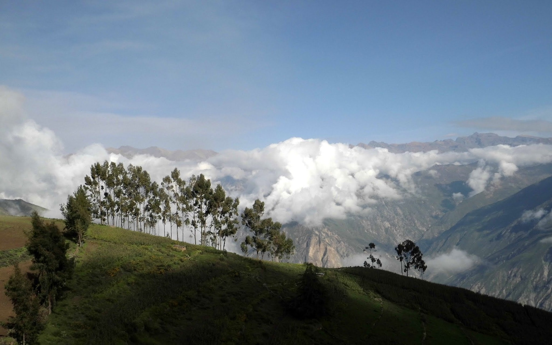 View from the rim of the Colca Canyon after climbing out of Sangalle